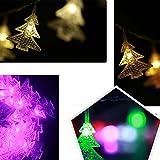 CALISTODE Weihnachtsschnur-Licht-100 LED-feenhafte Licht-Lampe f¨¹r im Freien Garten-Weihnachtshochzeits Lampe 10m-Dekor-EU-Stecker
