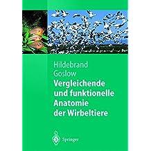 Vergleichende und funktionelle Anatomie der Wirbeltiere (Springer-Lehrbuch)