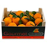 Naranjas Gourmet de Valencia Zumo 20 Kg por 21,49 €