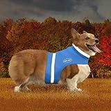 Corky 's Halsbänder see-me Hälfte Hund Weste, klein, Heiler blau