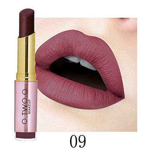 20 Schimmernden Primer (Lippenstift Matt,EUZeo Lipstick Ladies Beauty Makeup Waterproof Lipstick Hydrating Long Lasting Lipstick (9))