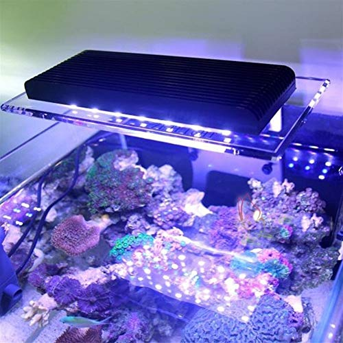 Marine LED Licht Koralle SPS LPS Clip Licht for Aquarium Sea Reef Tank Wifi Smart LED Lampe Aquarium Lichter (Color : White) -