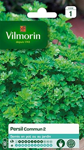 Vilmorin 3211500006790 3790141 Persil commun 2 officinal, Vert, 90 x 2 x 140 cm