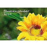 Blumenzauber · DIN A3 · Premium Kalender 2019 · Blumenstrauß · Rose · Valentinstag · Blume · Schmetterling · Natur · Set 1 Grußkarte, 1 Weihnachtskarte · Edition Seelenzauber