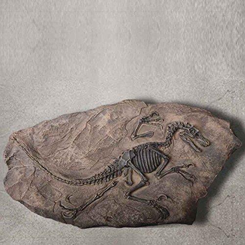 Alta Decoured imitación retro de fósiles de dinosaurios del Jurásico ornamentos Carcharodontosaurus Rex Decoración Resina Natural