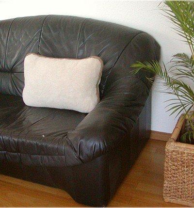 Preisvergleich Produktbild Kissen, Wollkissen aus reiner Merino Wolle beige/hellbraun mit RV und Füllung, waschbar, ca. 40x60 cm