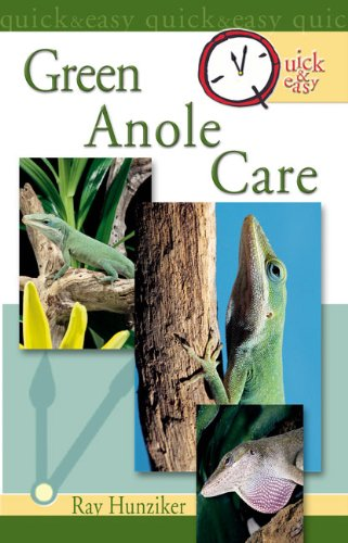 Quick & Easy Green Anole Care (English Edition) -