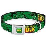 Buckle Down 22,9–38,1cm Hua-The Hulk Hund Halsband