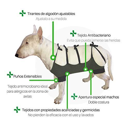 Faja abdominal cirugía, eliminan hasta un 99% de ácaros, bacterias, hongos y virus. Talla M