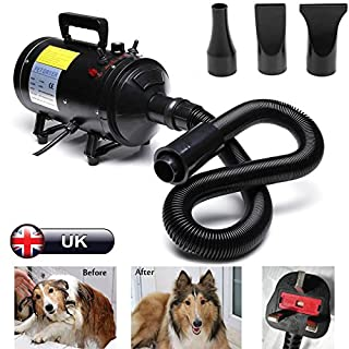 Autofather 2800W Dog Pet Hair Dryer Low Noise Stepless Speed Blower Grooming Adjustable Temperature 2.5M Flexible Hose with 3 Different Nozzles Car Hairdryer (Black), 2 Year Warranty