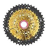 BOLANY MTB Fahrrad Kassette 9 Gang Freilauf 11-42T Gear Stahl Gold Schwarz Fahrrad Ritzel