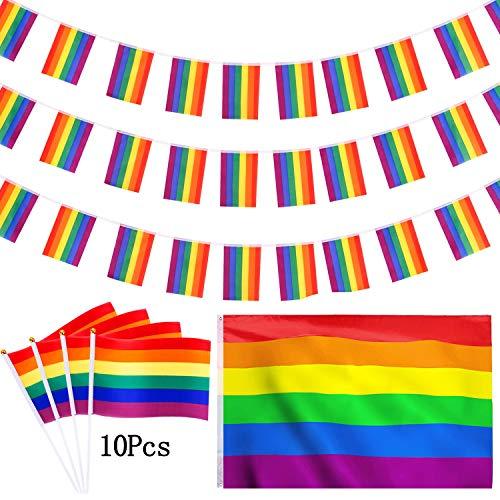 CNNIK Homosexuell Regenbogen Flagge Set, 12 Pcs Homosexuell Pride Day Rainbow Flags, 30ft Regenbogen Banner, 10 Pcs Hand Stick Flags und 3x5ft große Flagge für LGBT Pride Day Parade Party Dekoration -