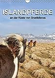 ISLANDPFERDE an der Küste von Snæfellsnes (Wandkalender 2018 DIN A4 hoch): Islandpferde in Island (Planer, 14 Seiten ) (CALVENDO Tiere) [Kalender] [Apr 01, 2017] Albert, Jutta