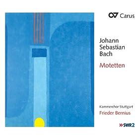 Jesu, meine Freude, BWV 227: Unter deinen Schirmen