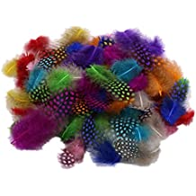 50pcs Mixed Color Guinea Hen Feathers (accesorio de disfraz)