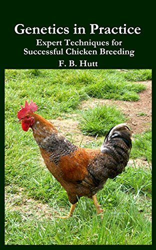 Genetics in Practice: Expert Techniques for Successful Chicken Breeding (English Edition)