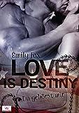 Love is destiny - Du gehörst mir von Emily Fox