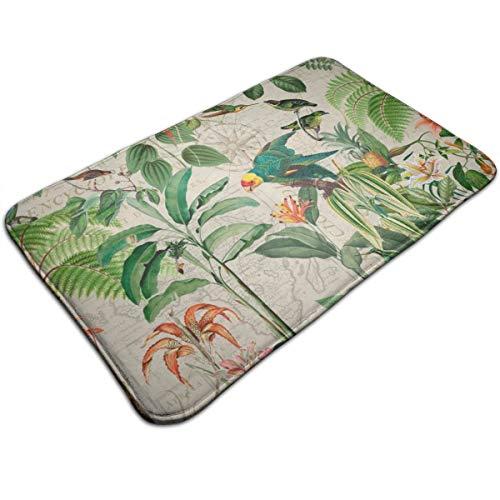 Xqqr Felpudo Antideslizante con diseño del Reino Tropical de los pájaros, Hojas, Loro para Interior/Exterior/Delantero...