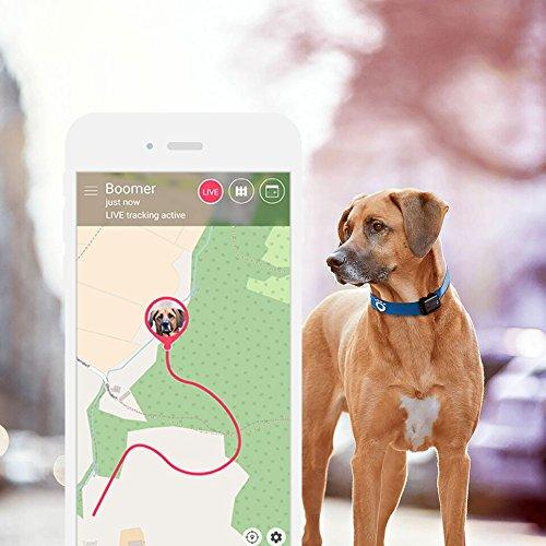 Tractive GPS 2 Tracker für Tiere Abbildung 2