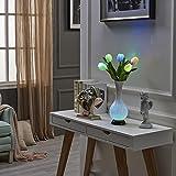LED Vase Schreibtisch lampe, AOKARLIA Bunt Tulpe Dekoration Nacht Lichter, USB Energieversorgung Nachttischlampen mit Blumen zum Hochzeit/ Valentinstag , colorful