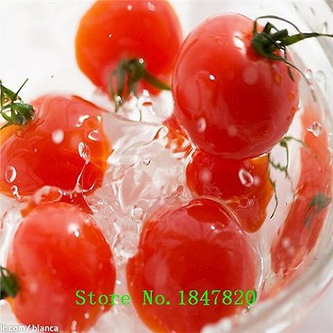 Nuovi semi di pomodoro ciliegia, pomodori pomodoro
