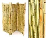 Bambus Paravent ALS Raumteiler mit 150x180cm - mobiler Sichtschutz Raum Teiler