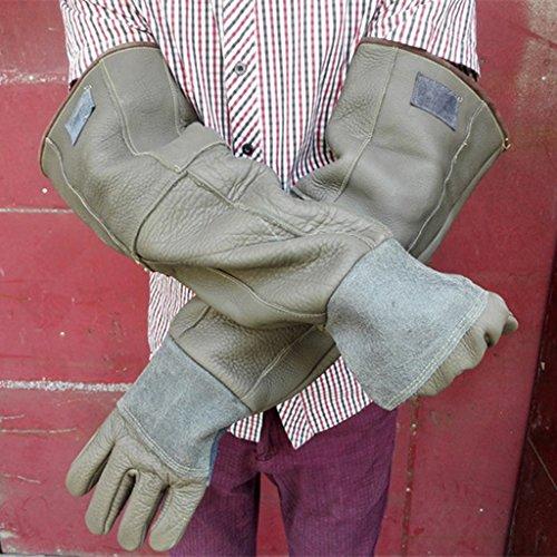 Handschuhe Verdickung Handschuhe Double Grooming Trim Tierpflege Kratzer beißen Frost Frost Arbeitshandschuhe Männer & Frauen erhältlich 2 Farbe 1 Paar ( Color : Gray 60cm )