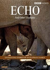 Echo & Other Elephants [DVD] [Region 1] [US Import] [NTSC]