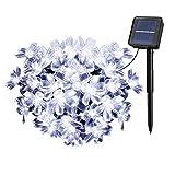 Solarbetriebene Garten Lichterkette 7m mit 50 Blume LED Außenlichterkette Wasserdicht Partylichterkette für Hochzeit,Festspiele,Zaun,Sonnenschirm,Terrasse,Haus und Außen Deko (Helles Weiß)