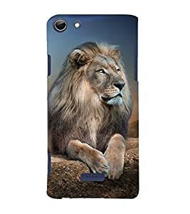 Lion Design 3D Hard Polycarbonate Designer Back Case Cover for Micromax Canvas Selfie 3 Q348