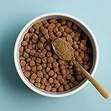 Pet Kelp Skin and Coat Formula Powder Antioxidant Supplement Dogs Cats 8oz - 5
