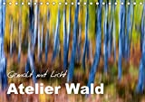 Atelier Wald - gemalt mit Licht (Tischkalender 2018 DIN A5 quer): Naturfotografie der Spitzenklasse - ohne Computereffekte! (Monatskalender, 14 Seiten ... Natur) [Kalender] [Apr 01, 2017] BÖHME, Ferry
