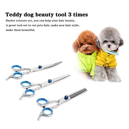 BallylellyHundesalon Schere Set Haircut Tools Kit Gerade & Effilierschere Kamm (Farbe: Silber) (Cut Kit Haircut)