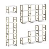 REGALRAUM MAXX 2x2 Regalsystem/Bücherwand | modular & flexibel | 117x76x33 cm (LxHxT) - weiß/eiche