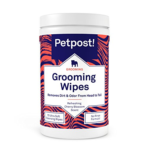 Petpost   Universal Pflegetücher für Hunde – große, geruchsbindende Tücher mit Kirschblüten-Duft – 70 ultraweiche Feuchttücher für die sanfte Pfoten- und Fellpflege (Kirschblüten)