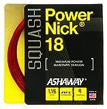 ASHAWAY PowerNick 18Squash Set 1,15mm–ro