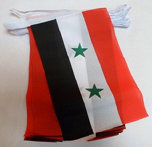 AZ FLAG Guirnalda 12 Metros 20 Banderas de Siria 45x30cm - Bandera Siria 30 x 45 cm - BANDERINES