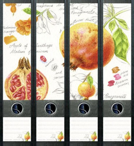 Apfel-granatapfel (4er Set Ordnerrücken für breite Ordner Granatapfel Apfel Aufkleber Etiketten Deko 428)