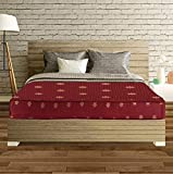 SLEEPSPA Cotton Back Support Orthopaedic Single Size Coir Mattress (Maroon, 4-inch)
