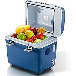 20L Mini Frigo Grande Capacité Portable Réfrigérateur De Voiture Cooler Warmer Box 220V AC Et 12V DC Pour Home Use Plug