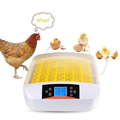 Befied Inkubator Brutmaschine Incubator Flächenbrüter für bis zu 56 Eier Inkubator Test