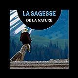 La sagesse de la nature (Sons relaxants de la nature pour la méditation, Musique de yoga pour la santé et la pleine conscience)
