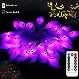 lichterkette lunsy 30LED halloween lichterketter mit Fernbedienung Wasserdicht UV Geist für Außen Weihnachten Halloween Party Park Fest Deko ...
