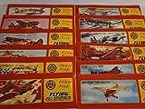 Schnooridoo 48 x Styroporflieger Flugzeug - Flugzeuge aus Styropor - Bausatz - Wurfgleiter Mitbringsel Kindergeburtstag Zero Tomahawk Mustang