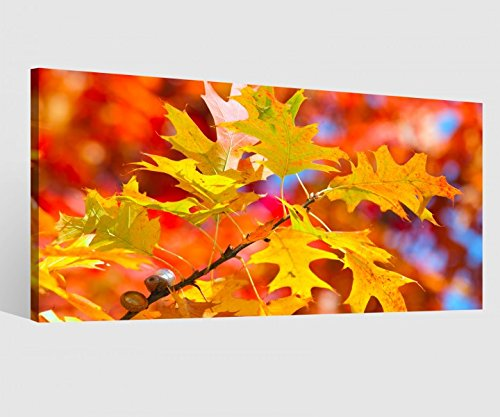 Leinwandbild Blatt Blätter Herbst Wald Baum bunt orange Leinwand Bild Bilder Wandbild Holz...