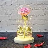 Fleur Artificielle Cadeau Saint-Valentin Cadeau Fleur Artificielle Fleur Rose Multicolore Bulbe en Verre Doré Savon Fleur Rose Bois