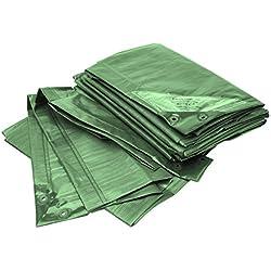 Bio Green Lona RX90-4X6-G Rainexo, 4 x 6 m, 90 g/m², incluye ojales