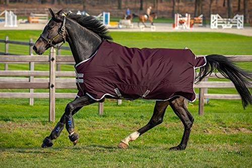 Horseware Amigo Hero Ripstop 100g Weichen Teppich 155cm Fig/Navy & Tan