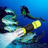 QKURT Immersione e Snorkeling