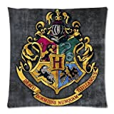 Harry Potter Hogwarts School Sign Gryffindor Ravenclaw Hufflepuff Slytherin Custom Pillowcase Pillow Sham Throw Pillow C